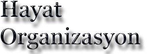 sünnet organizasyon firması